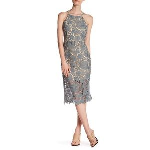 HP Romeo & Juliet Couture Woven Floral Lace Dress